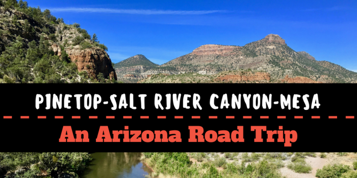 Pinetop Salt River Canyon Mesa - Phoenix to Tucson to Safford: An Arizona Road Trip