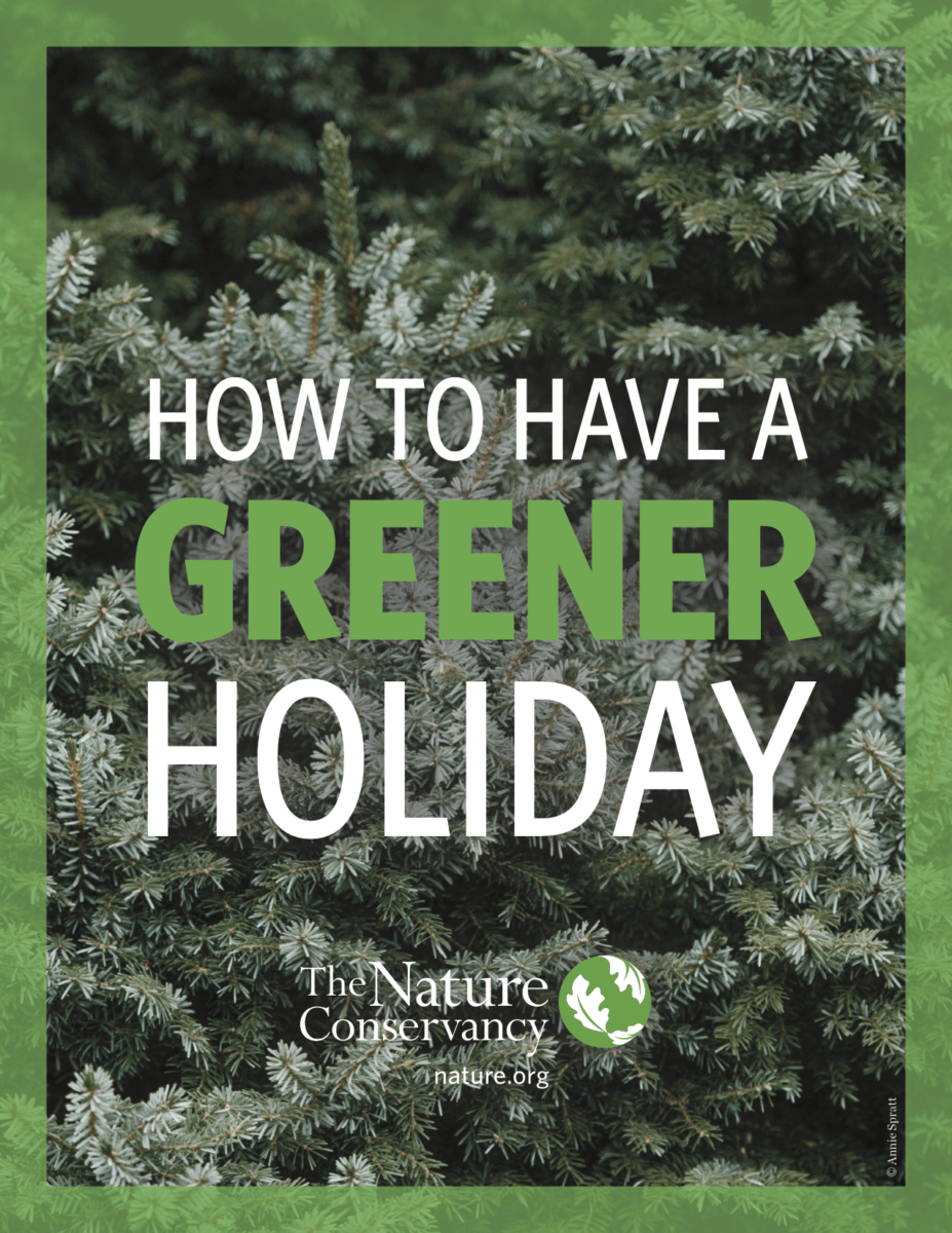 Holiday Green Guide - How to Have a Green Holiday Season this Year